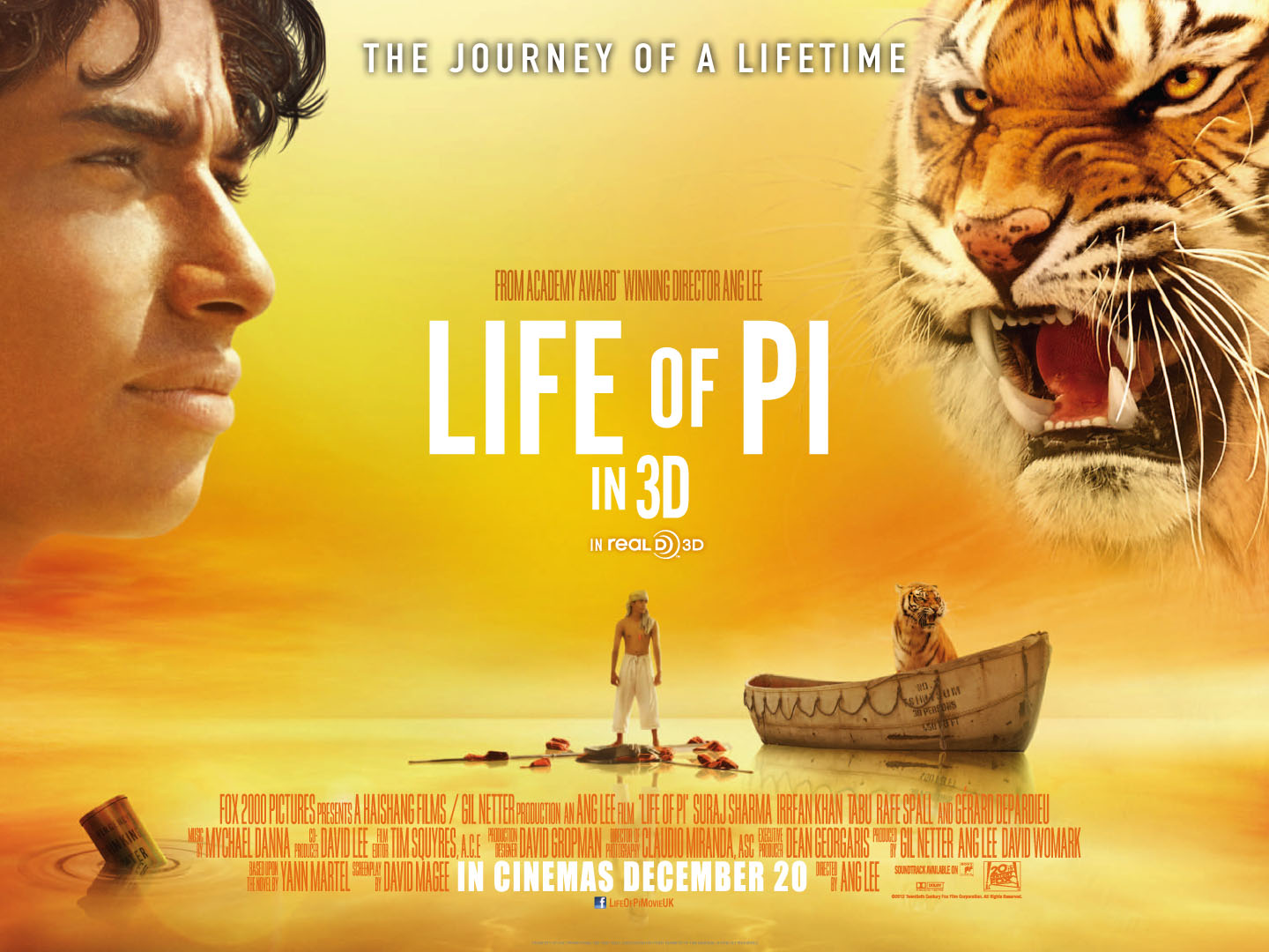 Movies life of pi swadeology for Life of pi swimming pool